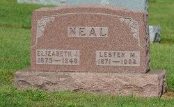 Lester Merlin Neal