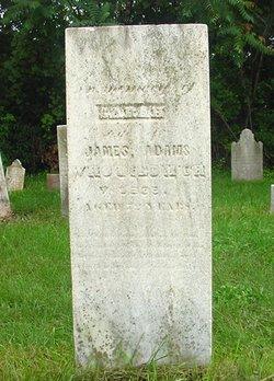 Sarah Ann <i>Dunn</i> Adams