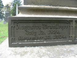 Augustus Brandegee