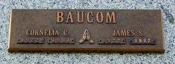 Alice Cornelia Baucom