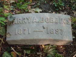Harry Alcott Dobbins