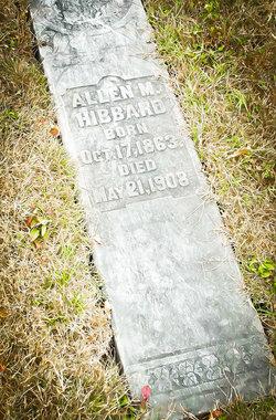 Allen M Hibbard