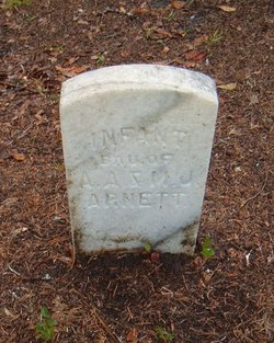 Infant Dau. Of A.A. & M.J. Arnett