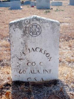 Andrew Jackson Jackson