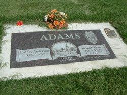Joseph Dan Adams