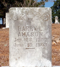 Harry L. Amason