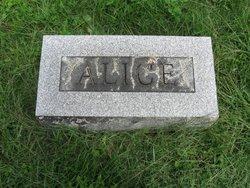 Alice M <i>Smith</i> Bashore