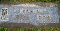 Harry Kane Bartel