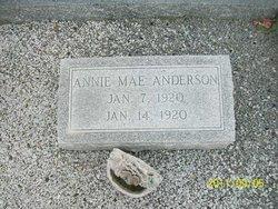 Annie Mae Anderson