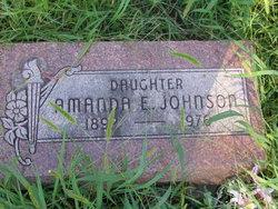 Amanda E Johnson