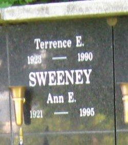 Ann E Sweeney