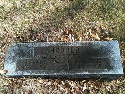 Mary Alice <i>Johnstone</i> Gardner