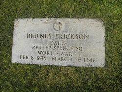 Burnes Erickson