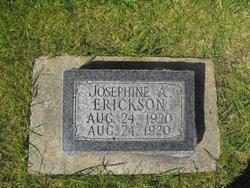 Josephine A Erickson