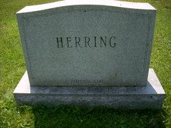 Freda Marion <i>Brawn</i> Herring