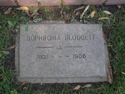 Sophronia Armenia <i>Curtis</i> Blodgett