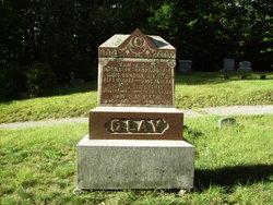Sam Johnson Clay