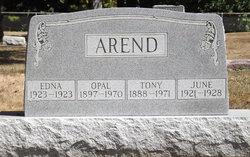 Anthony Cornelius Ton Arend