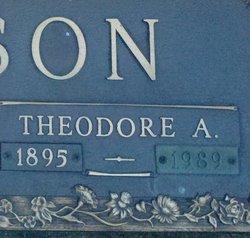 Theodore A Carlson