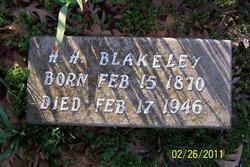 Henry Hamilton Blakeley