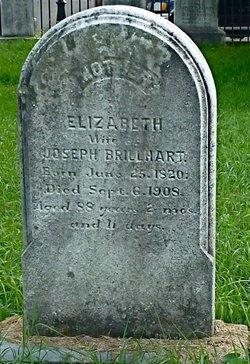 Elizabeth <i>Flick</i> Brillhart