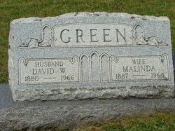 David W Green