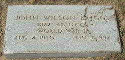 John Wilson Briggs