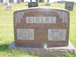 Stanley Charles Bialas