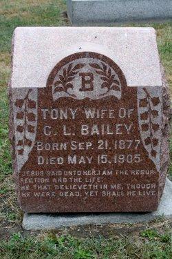 Tony <i>Rice</i> Bailey
