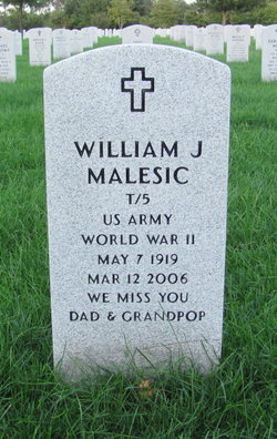 William J Malesic