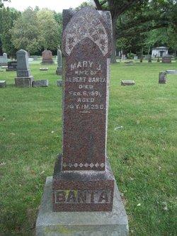 Mary J Banta