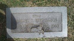 Robert E. Herrington