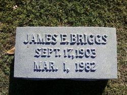 James Ethelbert Briggs