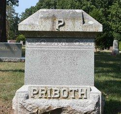 Caroline H. <i>Roedigar</i> Priboth