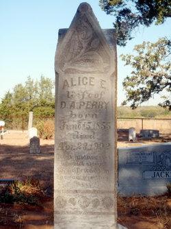 Alice E. Perry