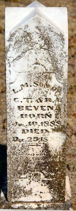 L.M. Beven