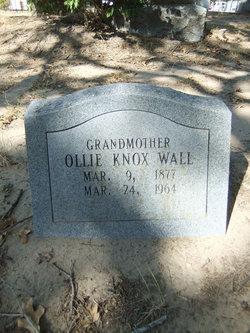 Olie Dice <i>Knox</i> Wall