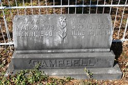 David P Campbell
