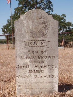 Ira E Brown