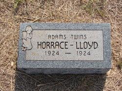 Horrace Adams