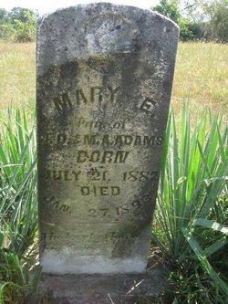 Mary E. Adams