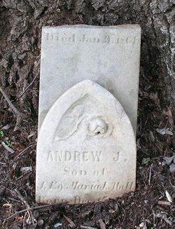 Andrew J Abell