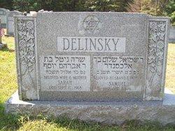 Sam Delinsky