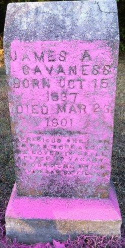 James A. Cavaness