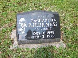 Zachary D Bjerkness
