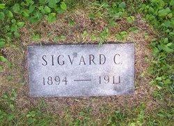 Sigvald C Engelsen