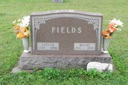 Evelyn <i>Wolfe</i> Fields