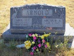 Carol Sue <i>Hoskamer</i> Arnold