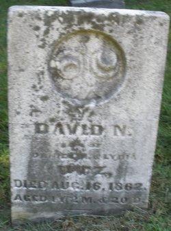 David N. Nutz