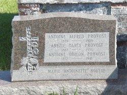 Anezie (Anazile) <i>Darce</i> Provost